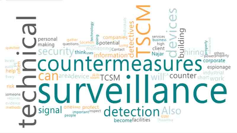 Detective for Technical Surveillance Countermeasures (TSCM)
